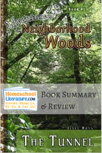 The woods Essay